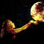 月光と鳳凰(ほうおう)